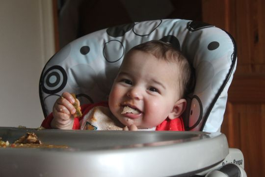The week in baby led weaning
