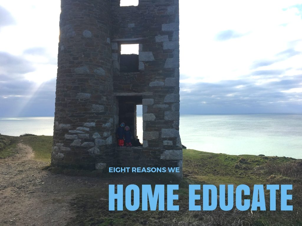 Eight reasons we home educate